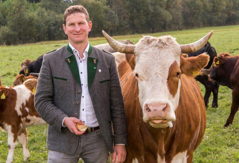 Kühberger fordert Hundeverbot auf bestimmten Almen