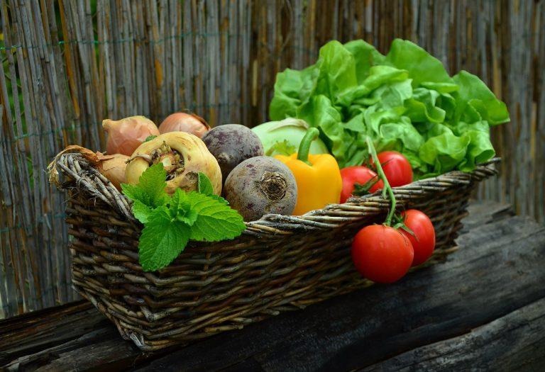 Fünf gesunde Food-Trends